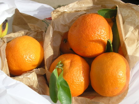 Clementines_i